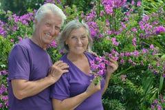 Ältere Paare, die draußen umfassend stehen Lizenzfreies Stockfoto