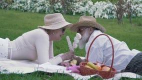 Ältere Paare, die Eibische am Picknick im Park sich einziehen stock video