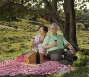 Ältere Paare, die ein Picknick haben Stockfotos