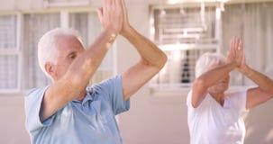 Ältere Paare, die ein Yoga durchführen stock video
