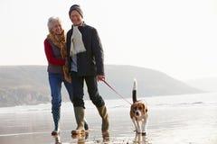 Ältere Paare, die entlang Winter-Strand mit Schoßhund gehen Stockbilder