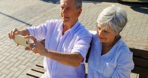 Ältere Paare, die Fotos an der Promenade 4k machen stock video footage