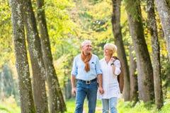 Ältere Paare, die Freizeitweg im Holz haben stockfotografie