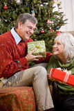 Ältere Paare, die Geschenke durch Weihnachtsbaum austauschen Lizenzfreies Stockbild