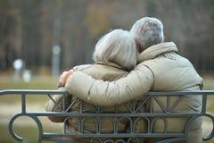 Ältere Paare, die am Herbstpark stillstehen lizenzfreie stockfotos