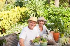 Ältere Paare, die in ihrem Garten sitzen lizenzfreie stockfotografie