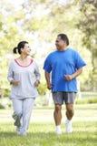 Ältere Paare, die im Park rütteln Lizenzfreie Stockfotos