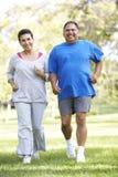 Ältere Paare, die im Park rütteln Stockbild
