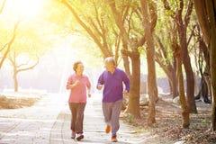 Ältere Paare, die im Park trainieren Stockfotografie