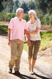 Ältere Paare, die in Land gehen Stockfoto