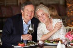Ältere Paare, die Mahlzeit im Restaurant genießen Stockfotografie