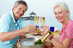 Ältere Paare, die Mahlzeit im Seeseite-Restaurant genießen Lizenzfreies Stockbild