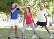 Ältere Paare, die mit persönlichem Trainer In Park arbeiten stockfotos