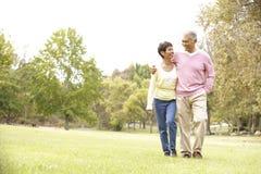 Ältere Paare, die in Park gehen Lizenzfreies Stockfoto