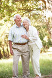 Ältere Paare, die in Park gehen Stockfotos