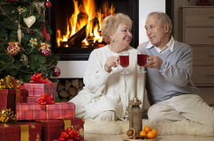 Ältere Paare, die Weihnachten feiern Lizenzfreie Stockfotos