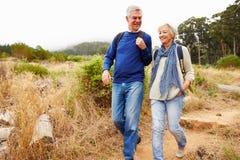 Ältere Paare, die zusammen in einen Wald gehen Lizenzfreie Stockfotos