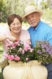 Ältere Paare, die zusammen im Garten arbeiten lizenzfreies stockbild