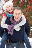 Ältere Paare draußen in der Snowy-Landschaft Lizenzfreie Stockbilder