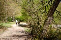 Ältere Paare heraus für einen Spaziergang Stockbild