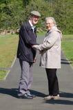 Ältere Paare im Park Stockbild