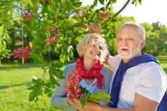 Ältere Paare mit blühendem Kastanienbaum Lizenzfreie Stockfotografie