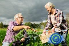 Ältere Paare mit Kasten Karotten auf Bauernhof Lizenzfreies Stockbild
