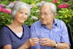 Ältere Paare mit trinkenden Gläsern Stockfotografie