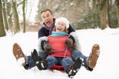 Ältere Paare Sledging durch Snowy-Waldland Stockbilder