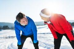 Ältere Paarläufer, die in der Winternatur, stehend stehen still stockbilder