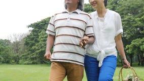 Ältere Paarleute, die im Frühjahr Tag in der Natur genießen und auf Picknick mit glücklichem Gefühl gehen stock video