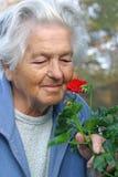 Ältere Person mit einer Blume. Stockbild