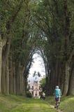 Ältere Radfahrer in der Eichenallee des Schlosses Den Bramel stockbilder