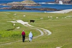 Älterer Bürger machen einen Spaziergang Stockbild