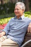 Älterer chinesischer Mann, der auf Park-Bank sich entspannt stockfotografie