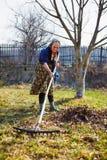 Älterer Frauenfrühjahrsputz in einem Walnussobstgarten Stockfoto