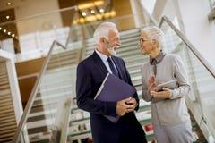 Älterer Geschäftsmann, der Dokumente und das Geschäftsfrauhalten hält stockfoto