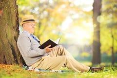 Älterer Herr, der auf einem Gras sitzt und einen Roman im Park liest lizenzfreies stockfoto