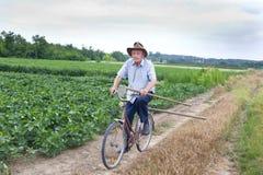 Älterer Landwirt, der ein Fahrrad reitet Stockfotos