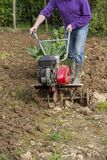 Älterer Landwirtgärtner, der im Garten mit rototiller, Pflügertraktor, cutivator, miiling Maschine arbeitet Lizenzfreie Stockbilder