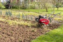 Älterer Landwirtgärtner, der im Garten mit rototiller, Pflügertraktor, cutivator, miiling Maschine arbeitet Stockbild