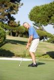 Älterer männlicher Golfspieler auf Golfplatz stockfotografie