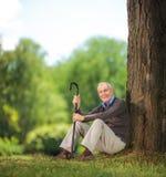 Älterer Mann, der einen Stock hält und auf Gras im Park sitzt Stockfotos