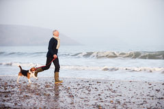 Älterer Mann, der entlang Winter-Strand mit Schoßhund geht Stockfotografie