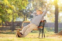 Älterer Mann, der im Park an einem sonnigen Tag sich entspannt Stockfotos