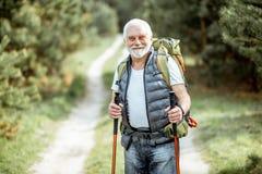 Älterer Mann, der im Wald wandert stockbilder