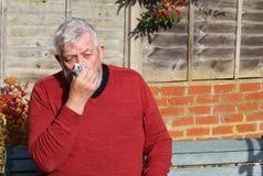 Älterer Mann mit einer Kälte, die seine Nase durchbrennt Lizenzfreie Stockfotos