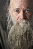 Älterer Mann mit langem Bart Lizenzfreie Stockfotografie