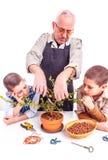 Älterer Mann mit seinen Enkelkindern stockbilder