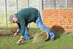 Älterer Mann vorbei gefallen Gartenunfall Lizenzfreie Stockfotos